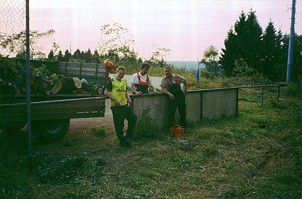 Holz-3ajpg