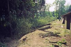 Holz-14