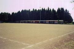 Rote-Asche-5